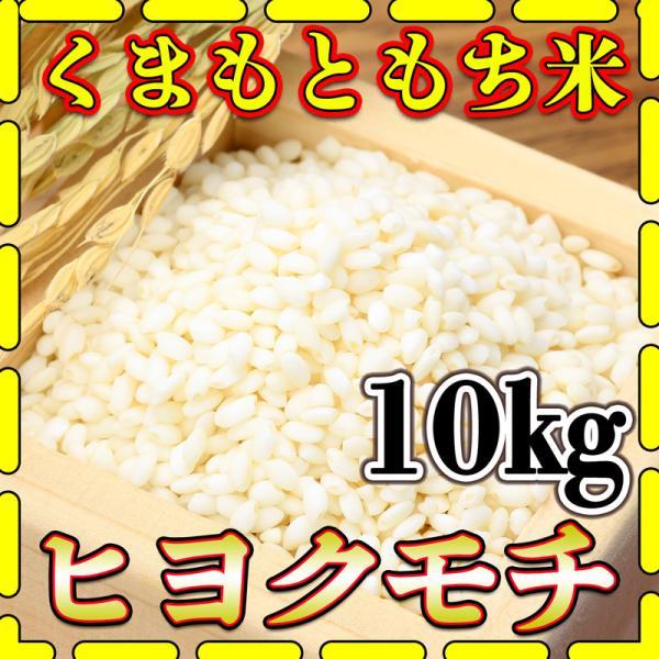 米 10kg 九州 熊本県産 ヒヨクモチ もち米 令和2年産 5kg2個 精白米 くまもとのお米 kuma-kome