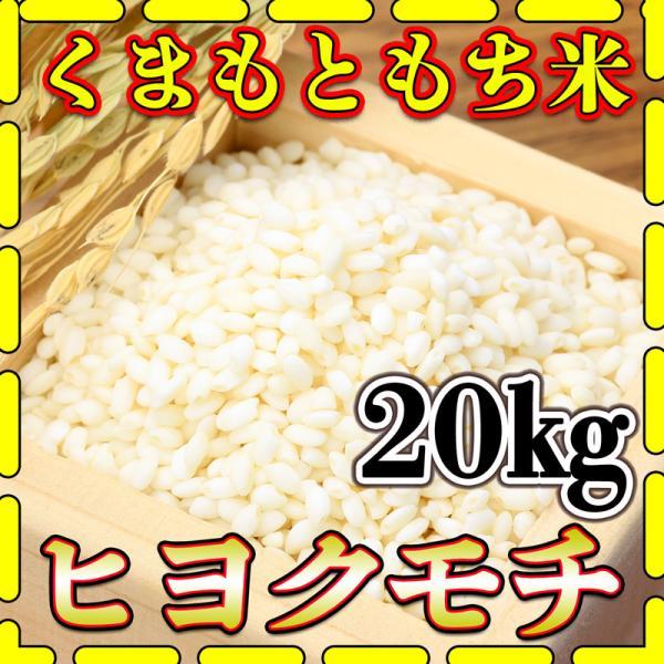 米 20kg 九州 熊本県産 ヒヨクモチ もち米 令和2年産 5kg4個 精白米 くまもとのお米 kuma-kome  富田商店 とみた商店