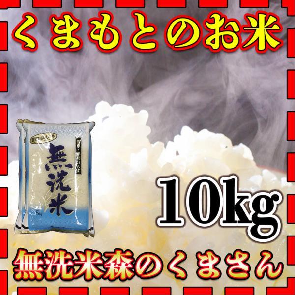 お米 米 10kg 白米 新米 九州 熊本県産 森のくまさん 無洗米 令和3年産 5kg2個 くまもとのお米 kuma-kome 富田商店 とみた商店