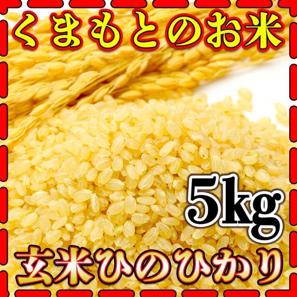 米5kg九州熊本県産ひのひかり玄米新米令和2年産ヒノヒカリあすつく5kg1個くまもとのお米kuma-kome