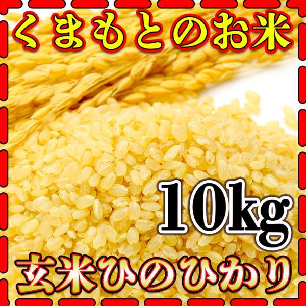 米 10kg 九州 熊本県産 ひのひかり 玄米 令和2年産 ヒノヒカリ あすつく 5kg2個 くまもとのお米 kuma-kome 富田商店 とみた商店