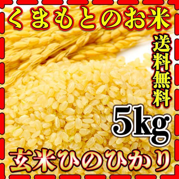 米 5kg 九州 熊本県産 ひのひかり 玄米 令和2年産 ヒノヒカリ あすつく 5kg1個 くまもとのお米 kuma-kome