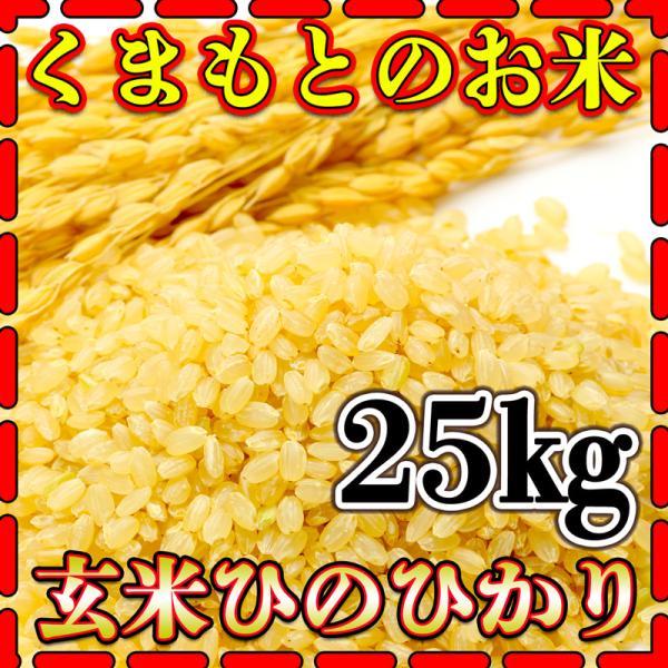 米 25kg 九州 熊本県産 ひのひかり 玄米 令和2年産 ヒノヒカリ 5kg5個 あすつく くまもとのお米 kuma-kome