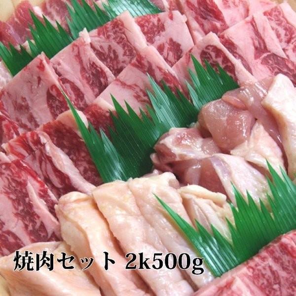 敬老の日 牛肉 焼肉 セット 2k500g 送料無料 カルビ ハラミ 牛タン 豚バラ 鶏もも 500gづつ セット 訳あり 国産  業務用 おすすめ 焼き肉 バーベキュー BBQ