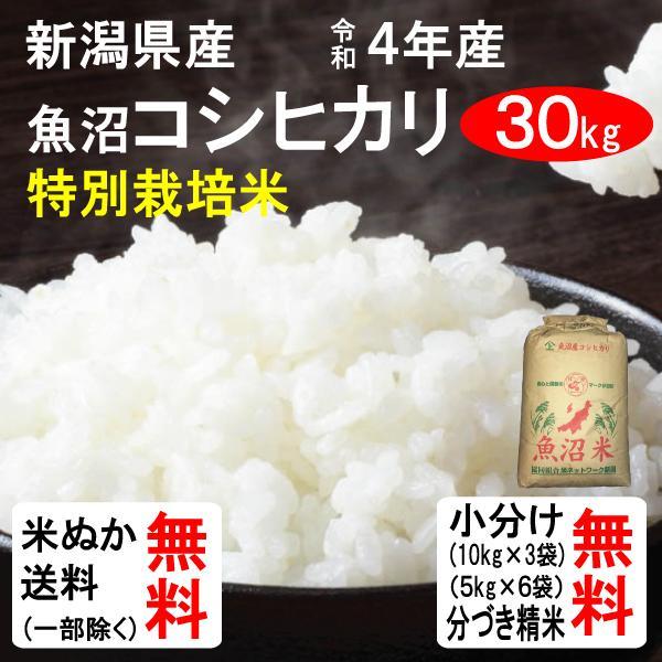米 30kg 送料無料 新潟県魚沼 コシヒカリ 1等玄米 クーポンで500円引き