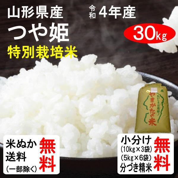 米 30kg 送料無料 山形県 特別栽培米つや姫 1等玄米 クーポンで500円引き