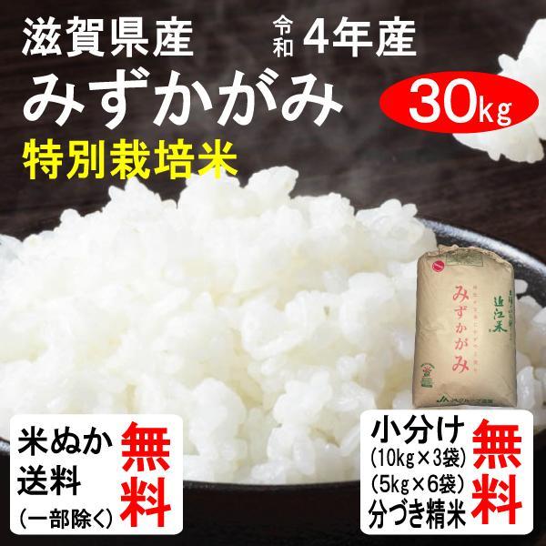 新米 30kg 送料無料 滋賀県 特別栽培米みずかがみ 1等玄米 クーポンで500円引き