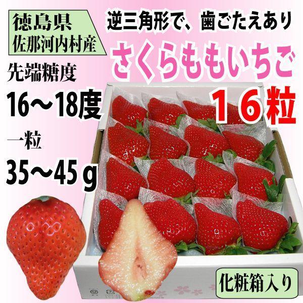 いちご さくらももいちご イチゴ 苺 16粒 化粧箱入り 送料無料 1〜4月にお届け