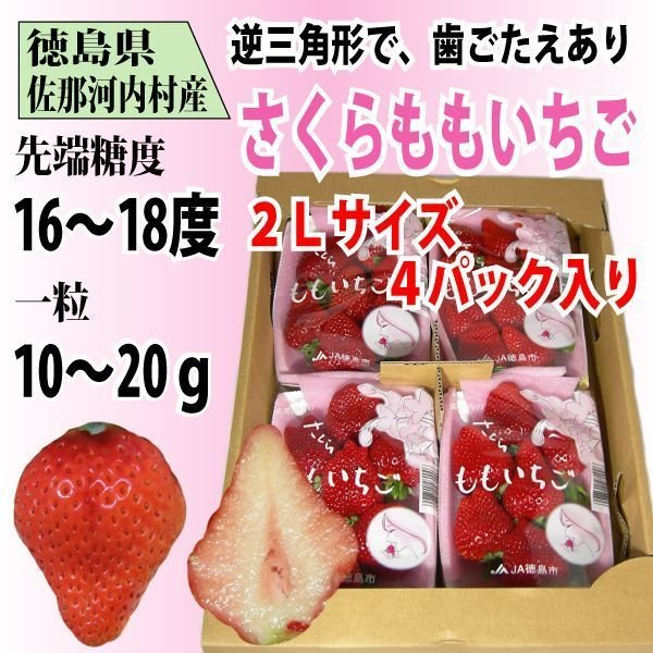 いちご さくらももいちご イチゴ 苺 2Lサイズ 4パック入り 送料無料 1〜4月にお届け