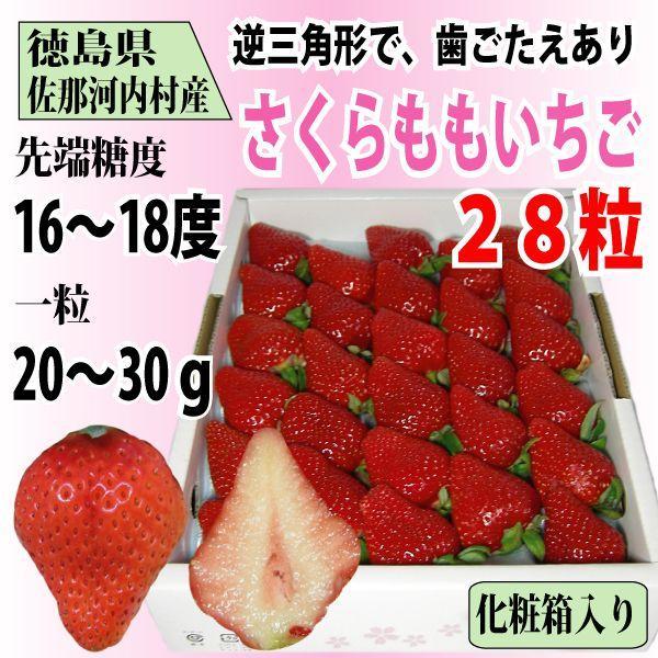 いちご さくらももいちご イチゴ 苺 28粒 化粧箱入り 送料無料 1〜4月にお届け
