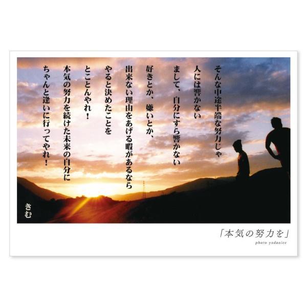 詩人きむ 言葉の応援ポストカード 「本気の努力を」 名言 格言 詩人 ...