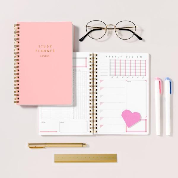 スタディプランナー リングノートタイプ <DAILY> STUDY PLANNER 手帳 勉強 計画 受験 韓国 ステーショナリー スケジュール かわいいおしゃれ ピンク (gssd)|tonary|12