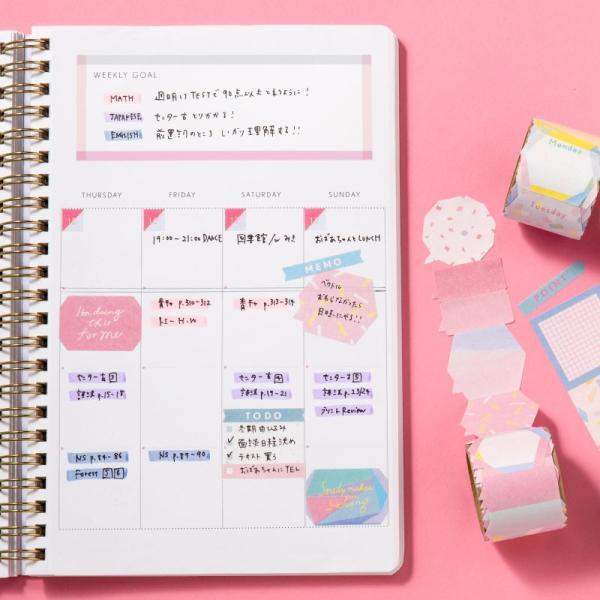 スタディプランナー リングノートタイプ <DAILY> STUDY PLANNER 手帳 勉強 計画 受験 韓国 ステーショナリー スケジュール かわいいおしゃれ ピンク (gssd)|tonary|09