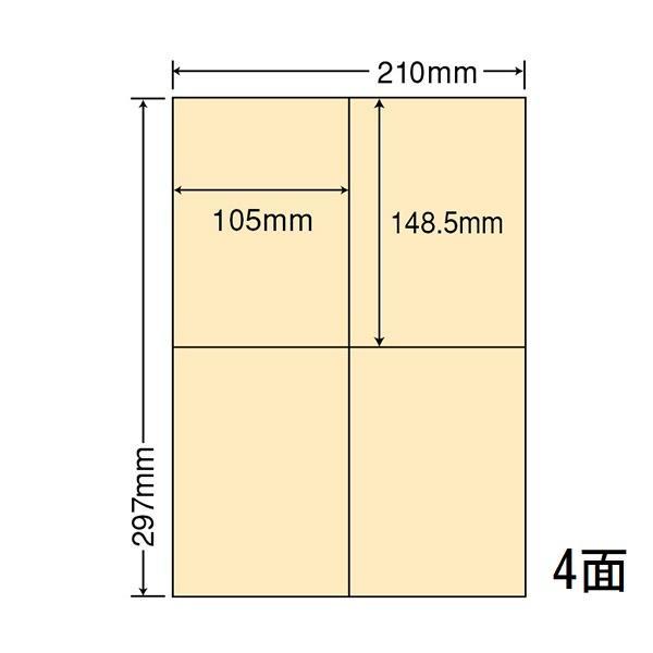 CL-50FHY イエロー A4サイズカラーラベル 再剥離 500シート マルチタイプ 管理ラベル 東洋印刷