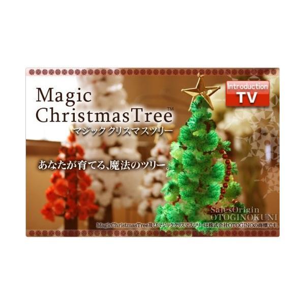 OTOGINO(オトギノ) マジッククリスマスツリー ホワイト 12時間で育つ不思議なツリー TR-11A-W tono-shop 03