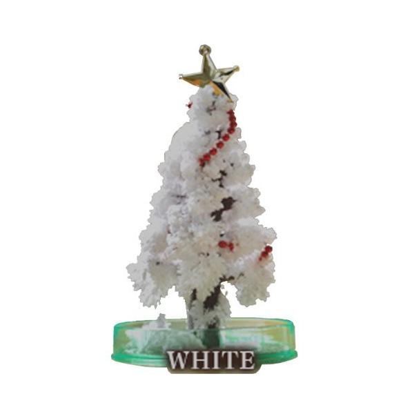 OTOGINO(オトギノ) マジッククリスマスツリー ホワイト 12時間で育つ不思議なツリー TR-11A-W tono-shop 04