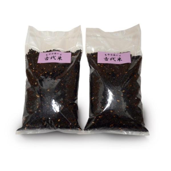 古代米黒米(500g×2袋入り)(送料込み)
