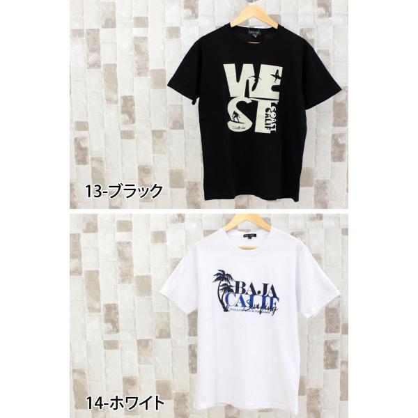 Tシャツ メンズ 半袖 アメカジ カレッジ ロゴT 文字 プリントTシャツ クルーネック カットソー 綿 春夏 トップス メンズファッション|topism|11