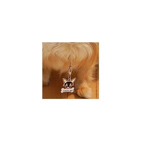 パピヨン(茶)  犬 迷子札  ドッグタグ 【名入れ】 トップワン ペット 犬鑑札 IDプレート メール便 アクセサリー  携帯ストラップ|topwan|04