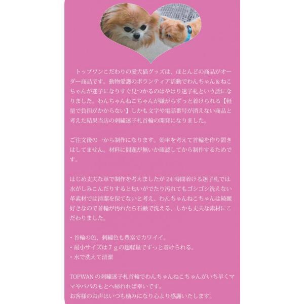 水に濡れても大丈夫 日本製 刺繍 軽量迷子札首輪(名前入り 首輪) Lサイズ 中型犬 大型犬 首周り35cm前後から制作可能 ネーム首輪  |topwan|02