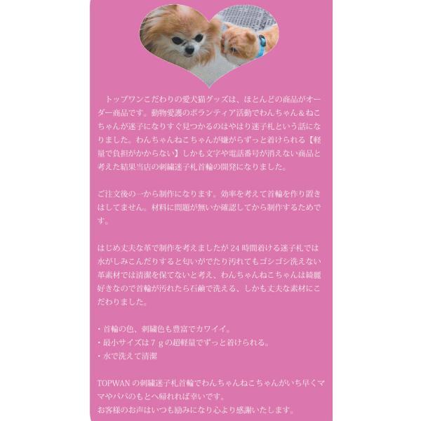 水に濡れても大丈夫!日本製 軽量迷子札 刺繍ネーム首輪 Mサイズ 小型犬 中型犬  首周り23cm前後から制作可能  イニシャル首輪 名前 名前入り 首輪|topwan|02