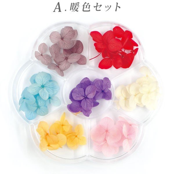 ドライフラワー 紫陽花 7色セット(A-C) tora-shop 02