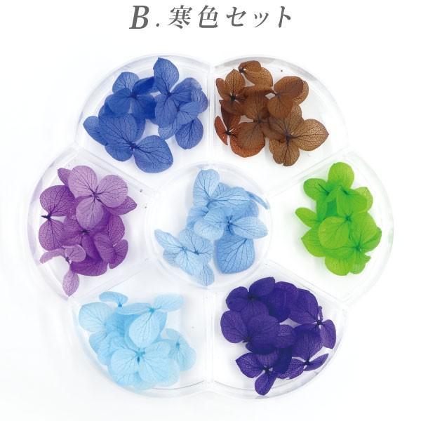 ドライフラワー 紫陽花 7色セット(A-C) tora-shop 03
