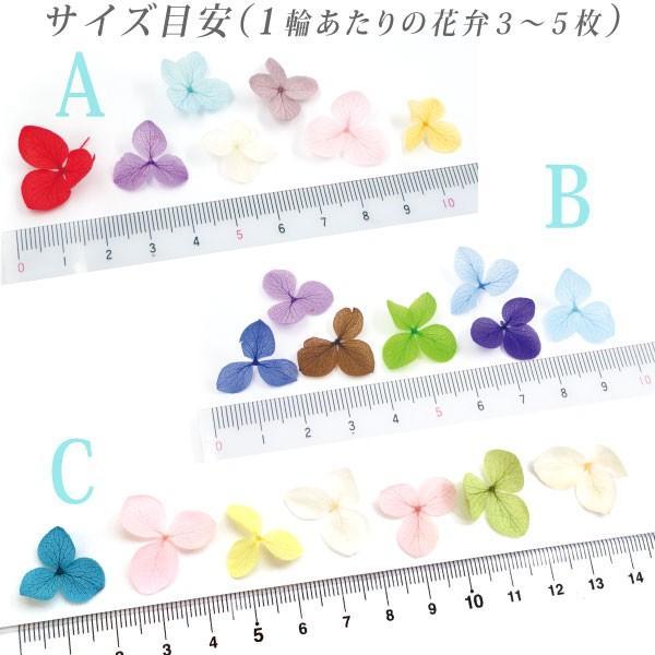 ドライフラワー 紫陽花 7色セット(A-C) tora-shop 05