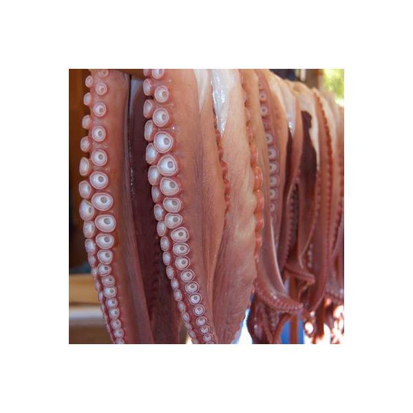 北海たこ足大サイズ 1kg タコ たこ 蛸 北海道鹿部産 タイムセール