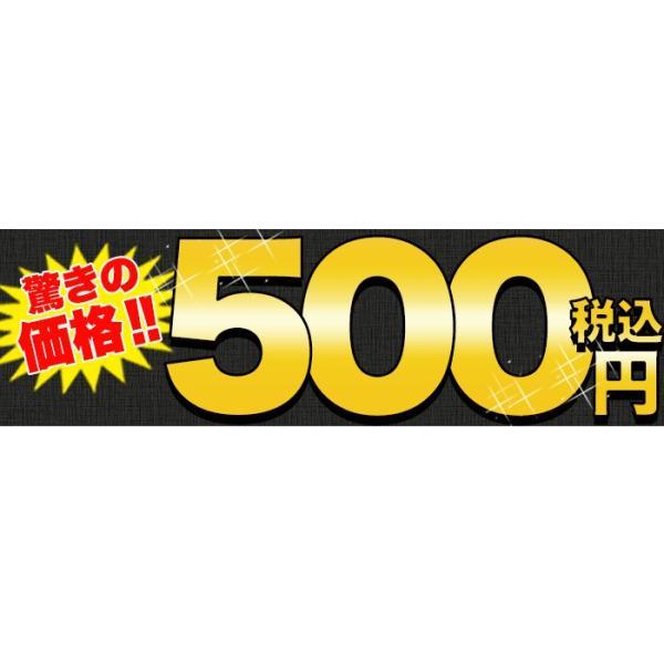 クーポン ポイント消化 500円 ポッキリ お試し 生そば(150g×つゆ2包)送料無料 ゆうメール便|toretate1ban|11