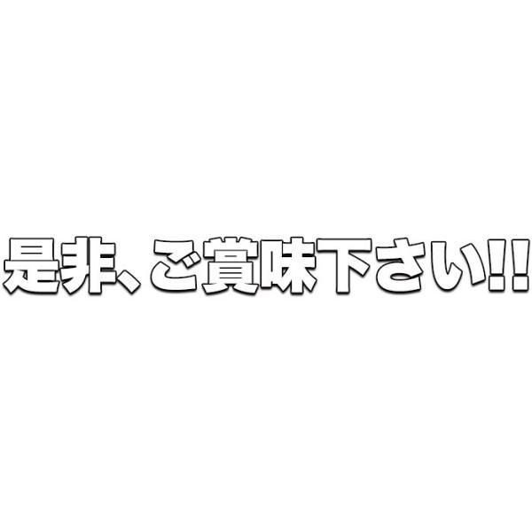 クーポン ポイント消化 500円 ポッキリ お試し 生そば(150g×つゆ2包)送料無料 ゆうメール便|toretate1ban|19
