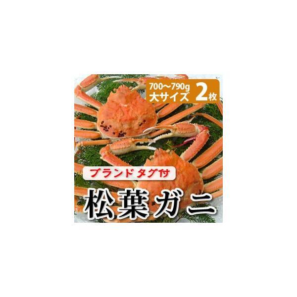 松葉ガニ(松葉がに)700〜790g(大サイズ)×2枚 日本海産 未冷凍 お歳暮ギフト 送料無料(北海道・沖縄を除く)
