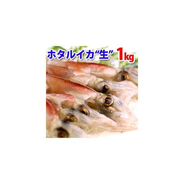 ホタルイカ(生冷凍)約1kg(約250g×4パック) 山陰沖産 ほたるいか 送料無料(北海道・沖縄を除く)