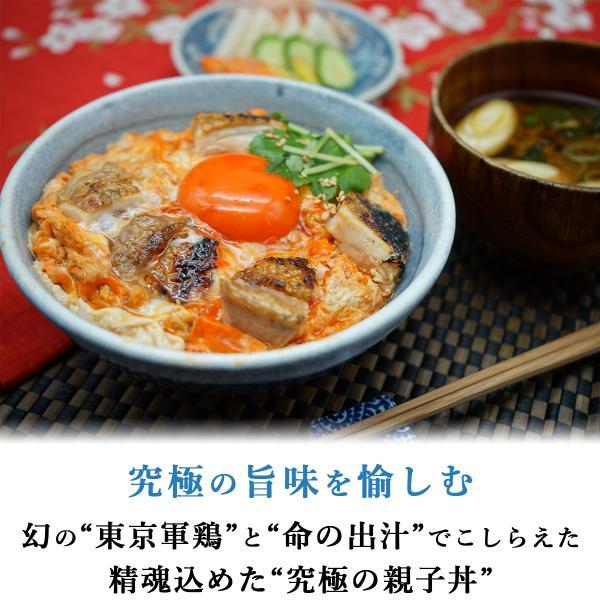 究極の親子丼の素(冷凍 4人前)|tori-goto|02