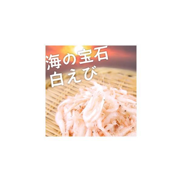 白えび 500g 海の宝石 生食可能 台湾産 白エビ 白海老 シロエビ しろえび
