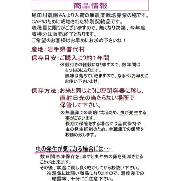 【国内産】赤粟の穂 500g 2019年産※お一人様2点まで※|torimura|02