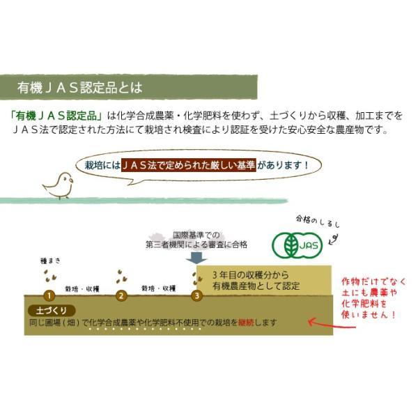CAP! 鳥の餌 有機JAS認定品 赤粟の穂 50g 2019年産 ※赤ラベル※熊本県産 torimura 05