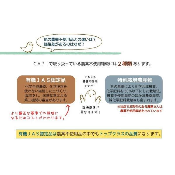 CAP! 鳥の餌 在庫処分市 有機JAS認定品 白粟の穂 100g 2018年産 熊本県産 ※緑ラベル※ torimura 05