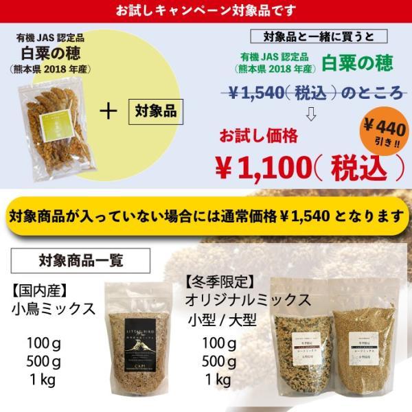 ※セット価格※ 熊本県産 有機JAS認定品 白粟の穂 100g 2018年産 ※緑ラベル※ CAP! 鳥の餌単品でのご注文は¥1,540となります。|torimura|02