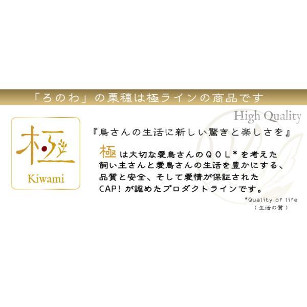 【熊本県産】有機JAS認定品 粟の穂 50g 2019年産 ※ろのわ赤ラベル※|torimura|03