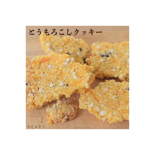 CAP! 鳥の餌 賞味期限:2020/6/30Sunny Kitchen とうもろこしクッキー 20g|torimura