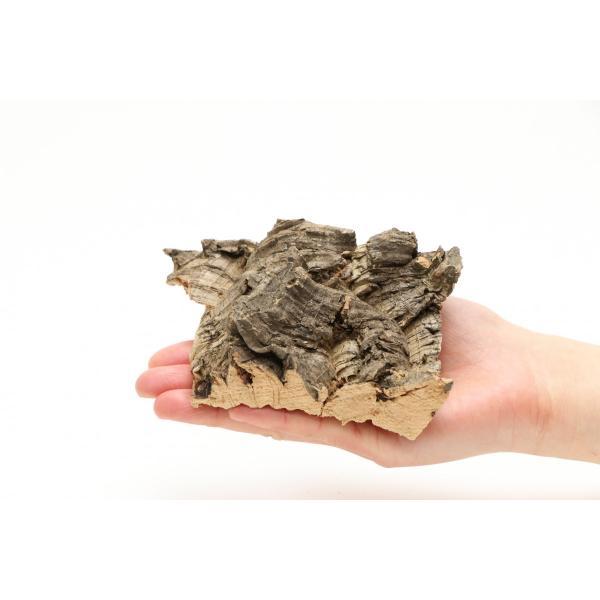 インコのおもちゃ 天然そのまま コルクの木 torippie 02