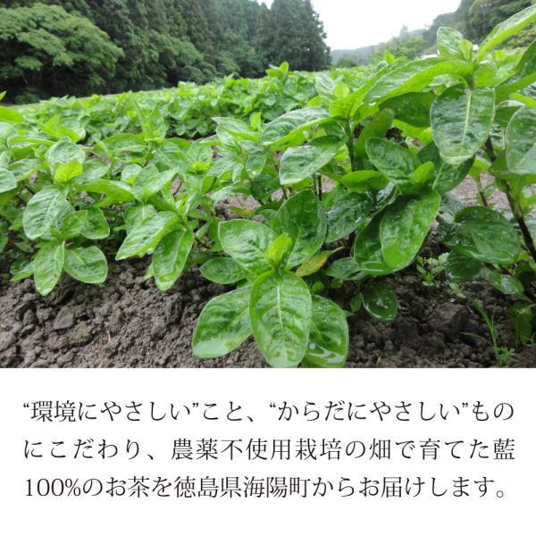 藍のお茶 藍の種茶 2g×10袋 藍の種100% 農薬不使用 自社栽培 徳島県産藍草 健康茶 ポリフェノール お茶 ティーパック 国産|tortoise1897|02