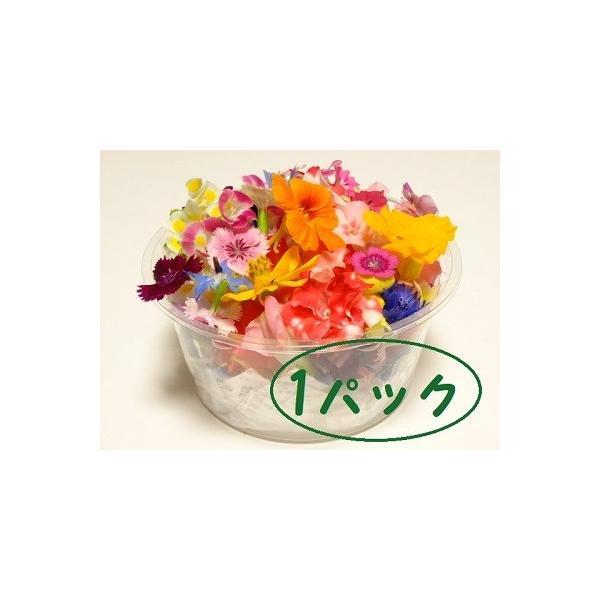 エディブルフラワー 1パックセット   (50〜70輪程度)|tosashimazunouen