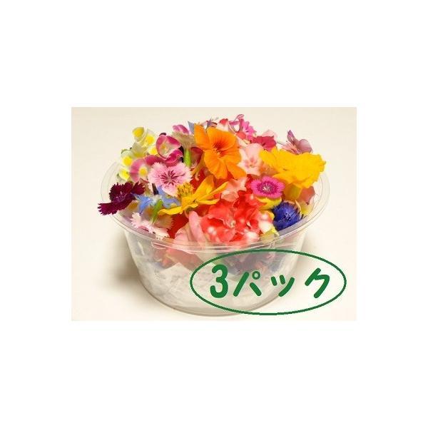 エディブルフラワー 3パックセット    (1パックに50〜70輪程度)|tosashimazunouen