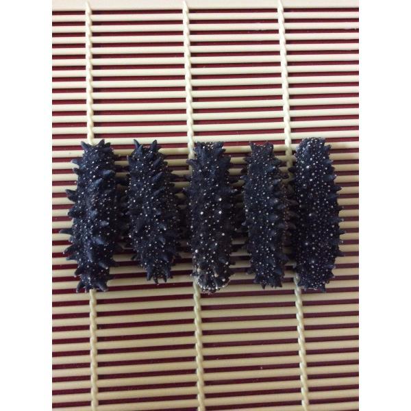 お試し北海道産 乾燥なまこ 100G入 6-10gMサイズ A級品 なまこ ナマコ 海参 乾燥ナマコ 干しなまこ 干しナマコ 刺参