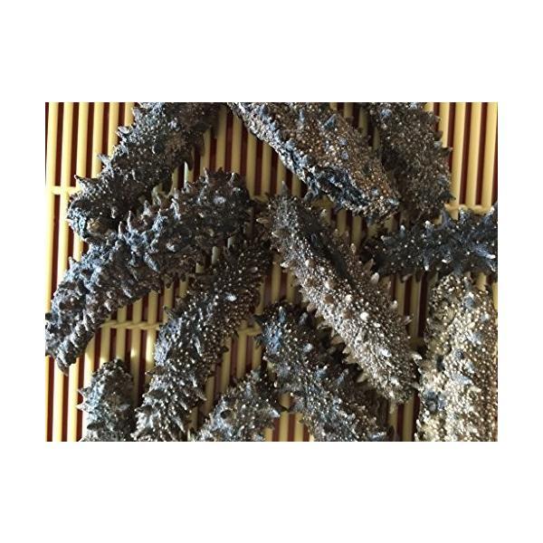北海道産 乾燥なまこ 1KG120個前後入 AB級品 なまこ ナマコ 海参 乾燥ナマコ 干しなまこ 干しナマコ 刺参