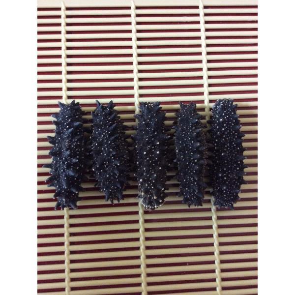 ポイント5倍 乾燥(黒) なまこ 北海道産 300G入 6-8g Mサイズ A級品 ナマコ 海参 黒なまこ 黒ナマコ 黒海参 乾燥ナマコ 干しナマコ 干しなまこ