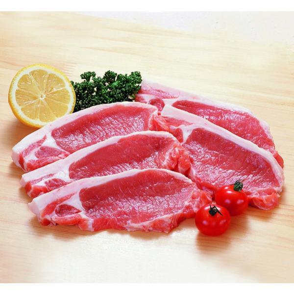 冷凍豚肉 豚ロース・カツ用 100g×5枚入