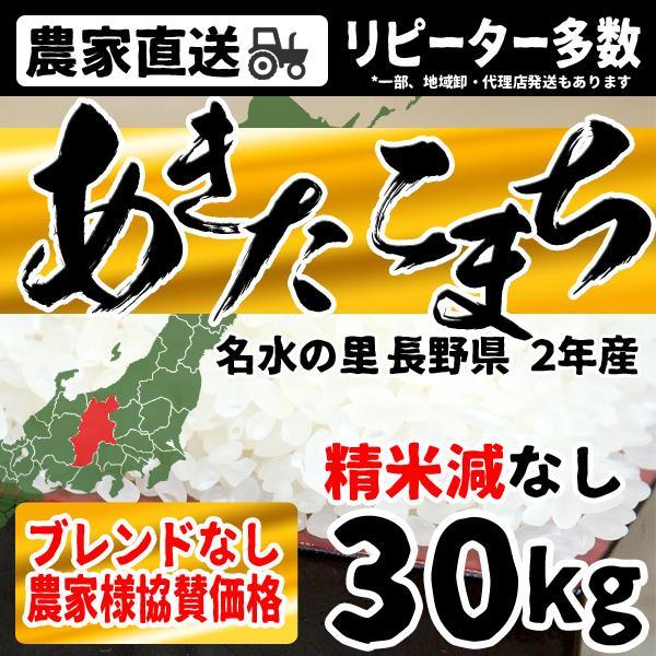 お米 30kg 送料無料 10kgx3袋 あきたこまち 安い 特価 長野県産 白米 精米 送料無料 令和2年産 沖縄・離島配送不可 出荷表要確認 ポイント消費
